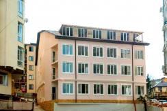 studio lysaya gora 7 244x163 - Продажа квартиры-студии по ул. Лысая Гора (20,9 м²)