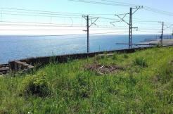ych landysheva 4 246x162 - Продажа земельных участков по ул. Ландышевой (12000 м²)