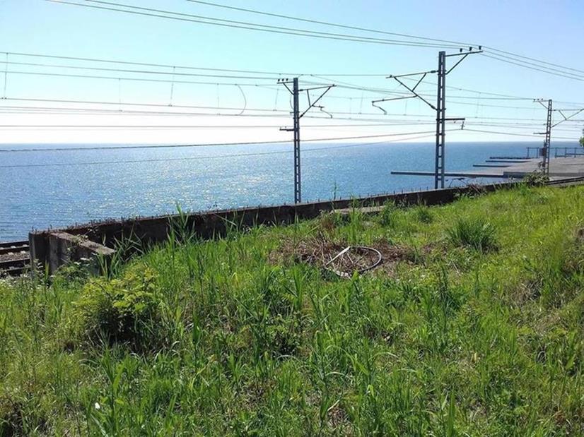 Продажа земельных участков по ул. Ландышевой (12000 м²)