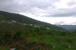 Screenshot 1 246x162 - Участок в пер. Овощной, 30 (520 м²)