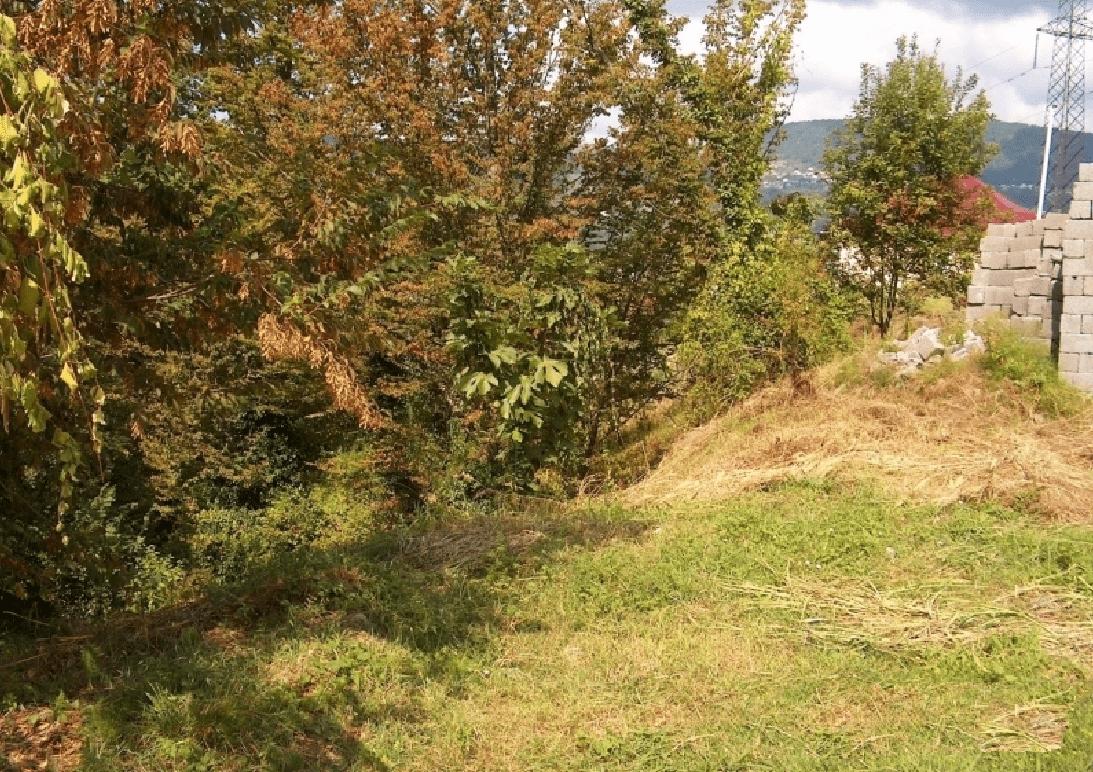 Участок в пер. Вишневый (500 м²)