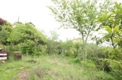 prigorod 3 246x162 - Участок в р-не Пригород (450 м²)