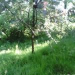 prigorod 2 150x150 - Участок в Пластунке (820 м²)